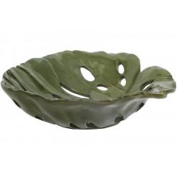 طبق نبات ديكور
